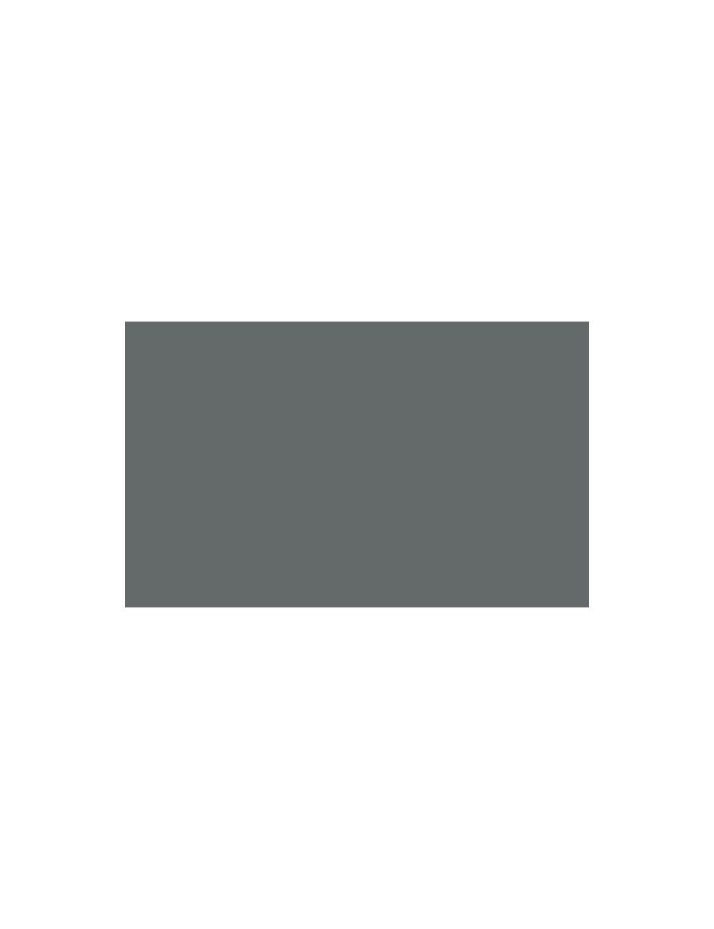Lente Ojo de Pez Fancier 0.25X con MACRO www.apertura.cl
