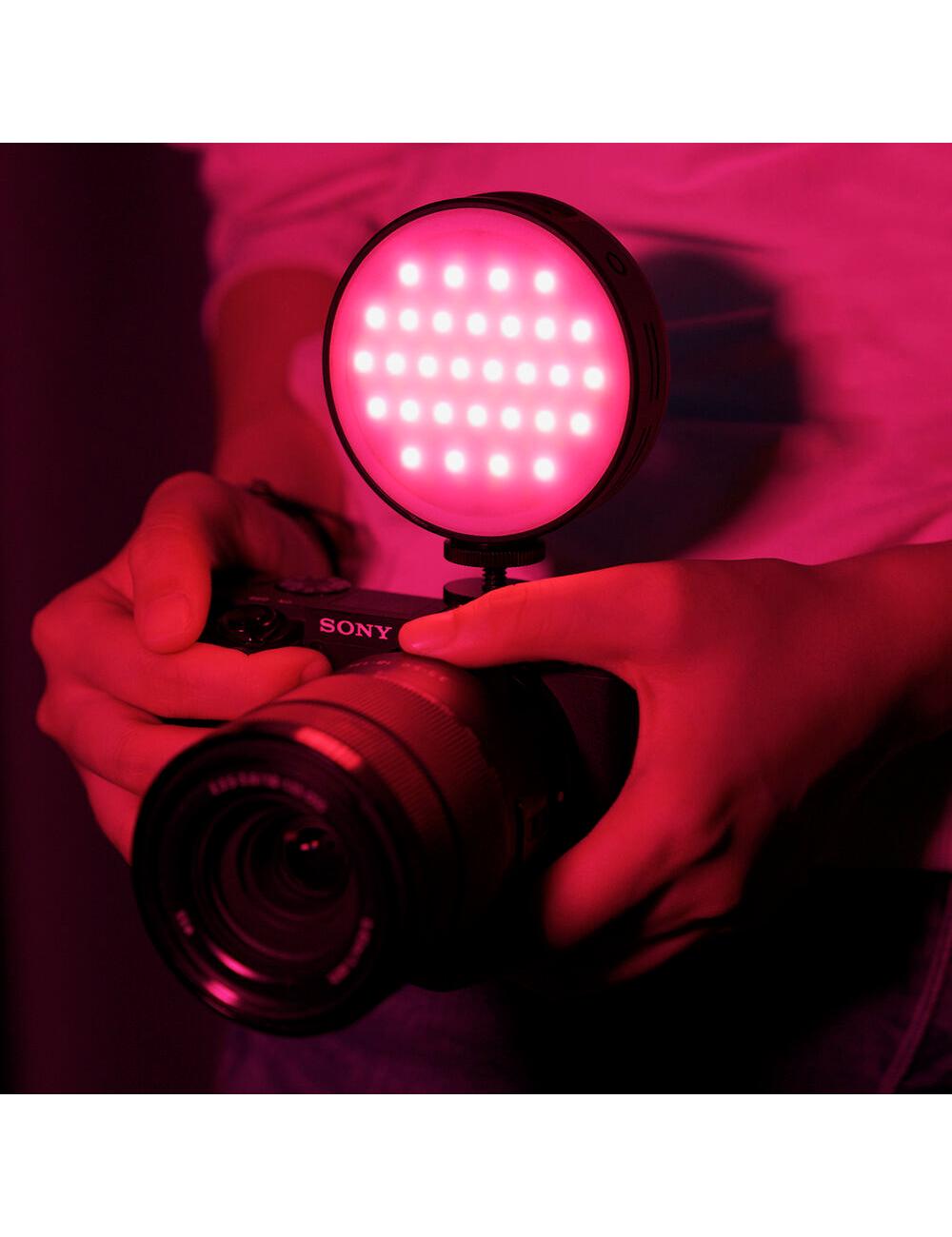 KIT - Profoto B10 Flash Con Batería, Beauty Dish, Trípode Manfrotto y Bolso Canon