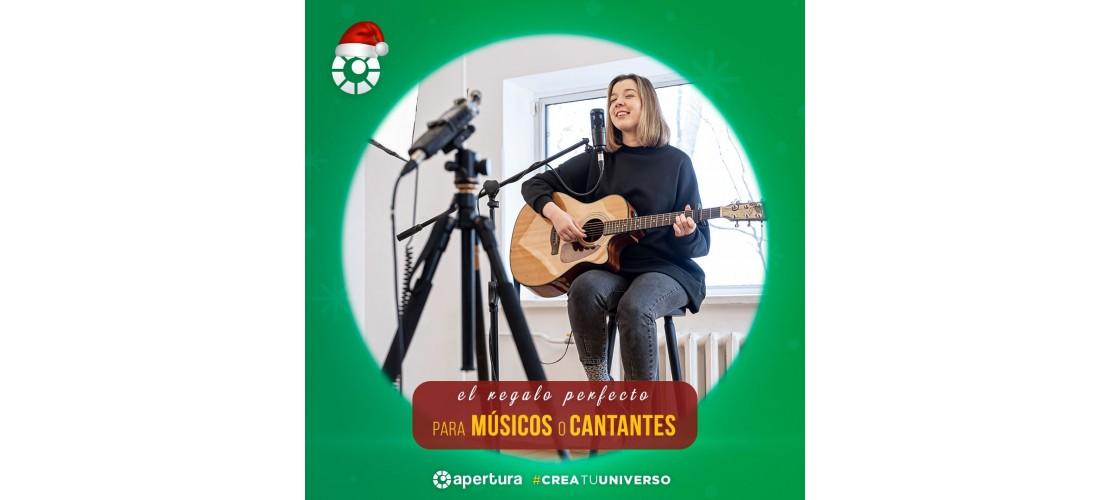 Músico - Cantante